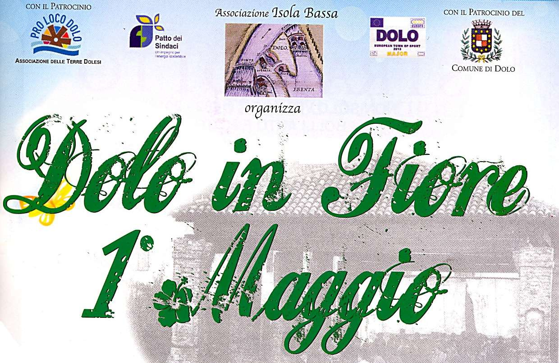 LOGO DOLO FIORE 2013.jpg