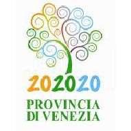 logoProvVePattoSindaci202020.JPG